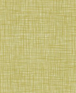 Scribble wallpaper by Orla Kiely - Olive