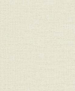 Raya wallpaper - Shell