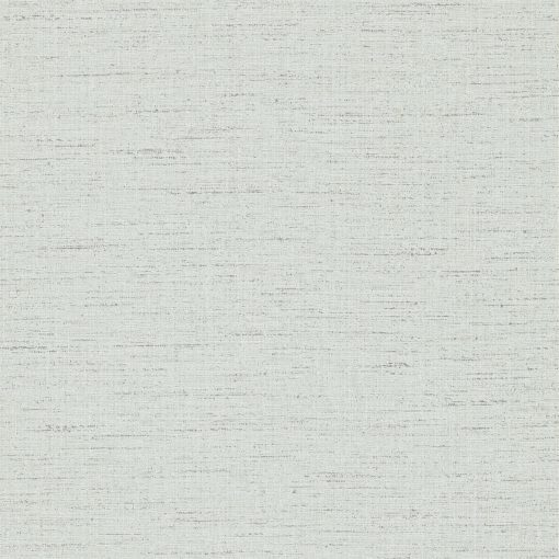 Raya wallpaper - Pebble