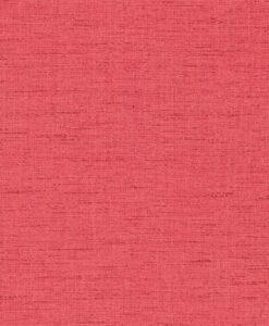 Raya wallpaper - Raspberry