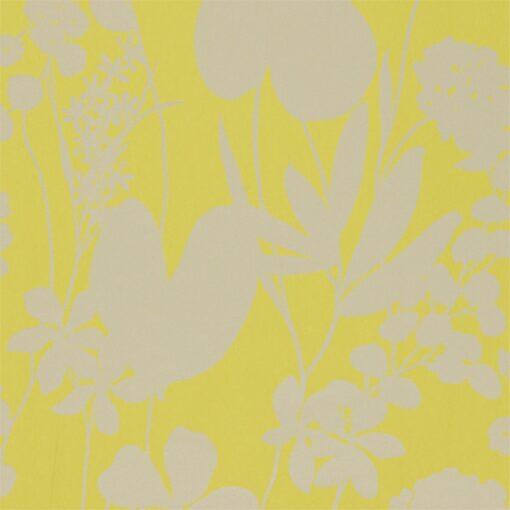 Nalina wallpaper - Zest