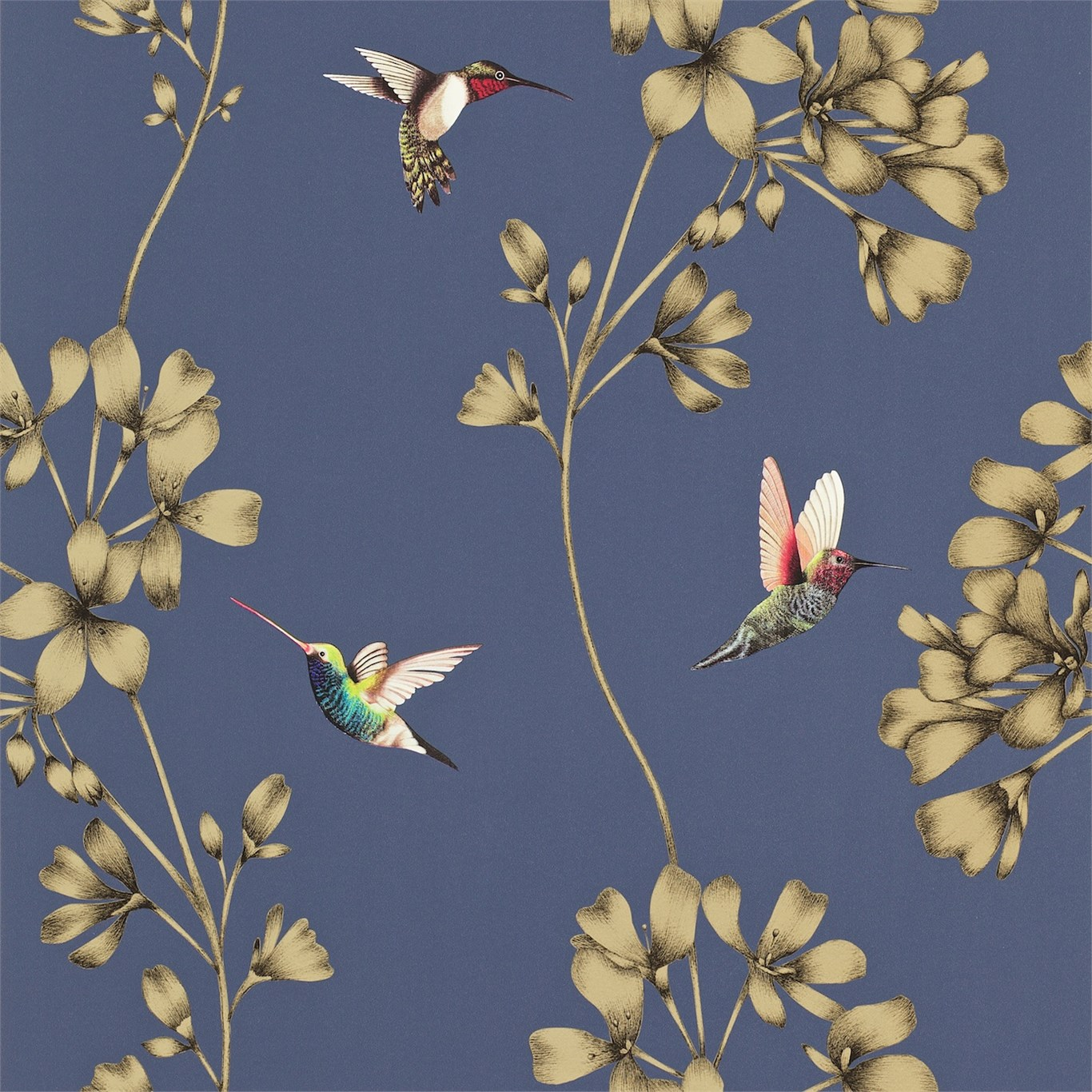 Harlequin Amazilia Wallpaper Australia Silk Interiors Wallpaper Australia