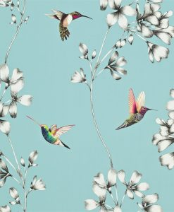 Amazilia hummingbird wallpaper - Sky