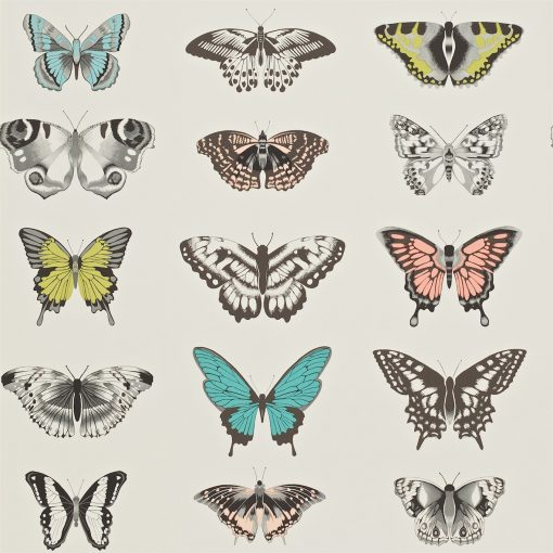 Papilio butterfly wallpaper - Peach, Lagoon and Zest