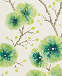 Kabala wallpaper in Gooseberry