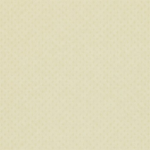 Plain wallpaper by Zophany in Pale Green