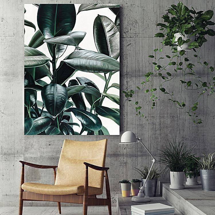 Jungle Fever - Rubber Plant Print