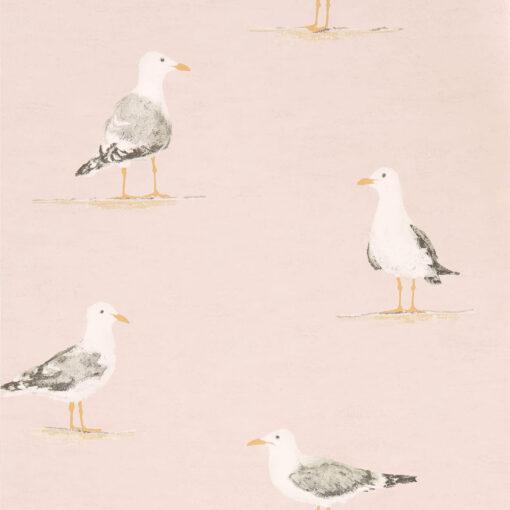 Shore Birds in Blush