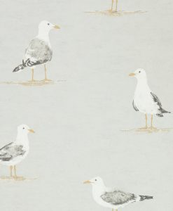 Shore Birds in Gull