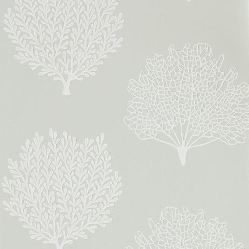 Coraline in Gull