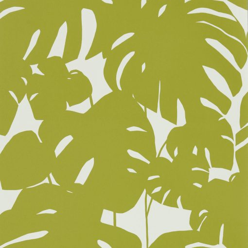 rizona Palm Tree Wallpaper in Kiwi