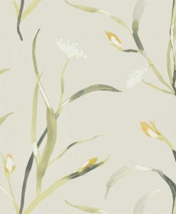 Sanoa Wallpaper from the Zapara Collection in Ochre and Linen