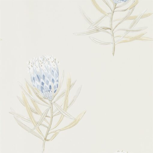 Protea Flower Wallpaper from The Art of the Garden Collection in China Blue & Canvas