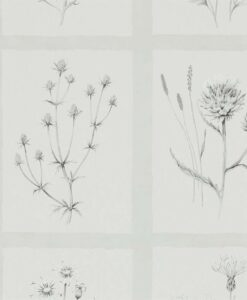 Little Thistles wallpaper by Sanderson Home in Pewter