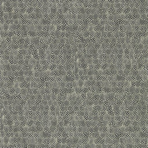 Guinea Wallpaper from the Kempshott Collection in Charcoal