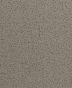 Cracked Earth Wallpaper from the Oblique collection by Zophany in Gobi
