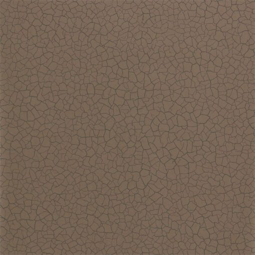 Cracked Earth Wallpaper from the Oblique collection by Zophany in Bronze