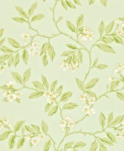 Blossom Bough Wallpaper