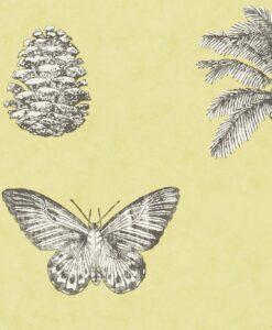 Cocos Wallpaper