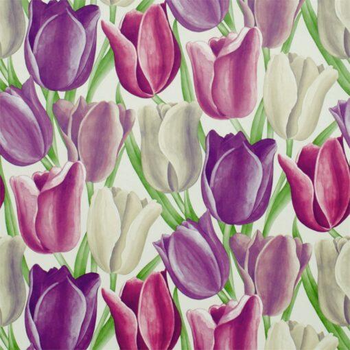 Early Tulips Wallpaper